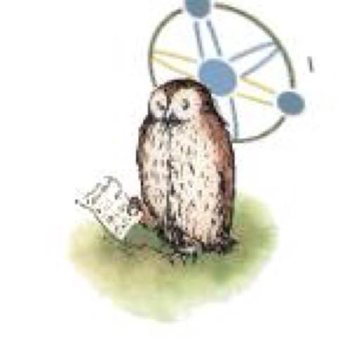 Atom Owl's avatar