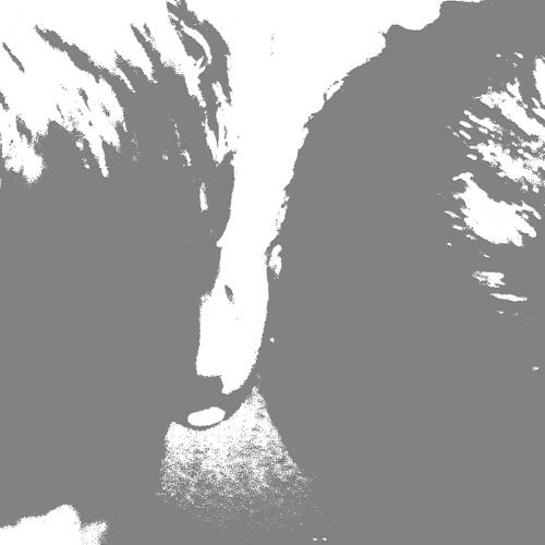 Sil & Sucha's avatar