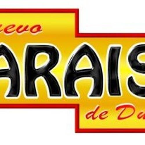 Nuevo Paraiso de Durango's avatar