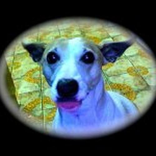 Shimi Basserabie's avatar