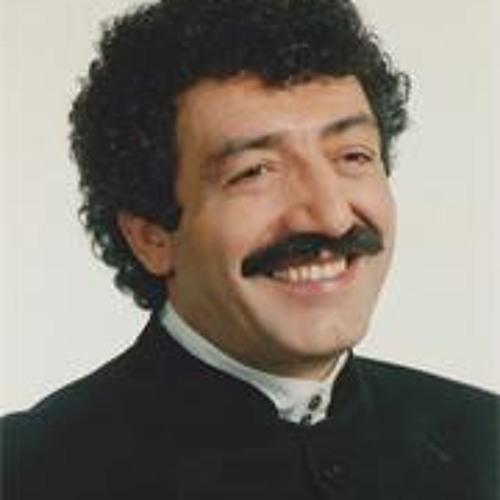 muslumgursesofficial's avatar