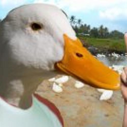 Sebastian Andres Torres's avatar
