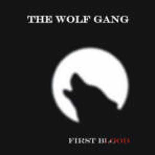 thewolfgangde's avatar