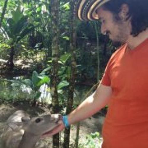 Andrew Murano's avatar