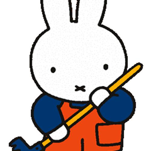 Paul Riphagen's avatar