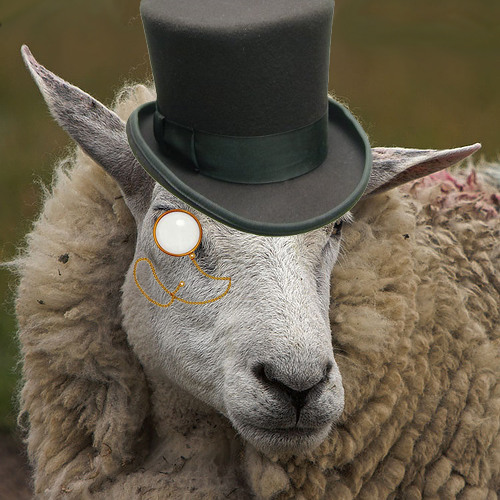 Fancy Sheep Reads: Episode 5-Racial Epithets and Autism (Uncensored)