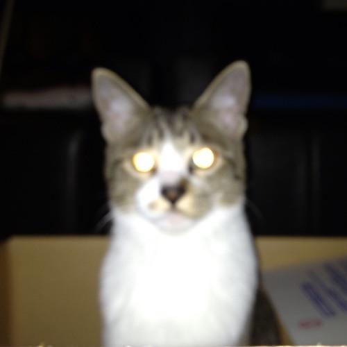 h.p.s's avatar