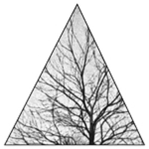 radiochestnut's avatar