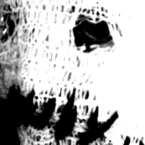 djcrsrwk's avatar