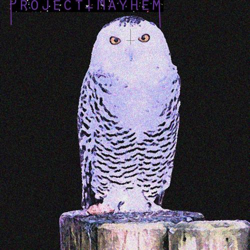 Project Mayhem!!'s avatar