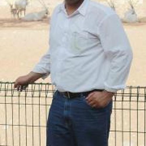 Yasir Gul's avatar