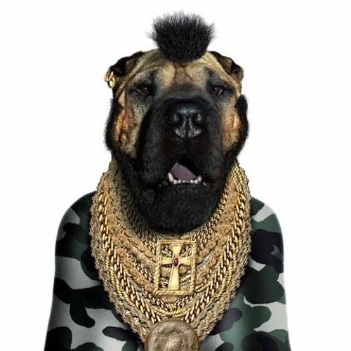 Shav_mixtapes's avatar