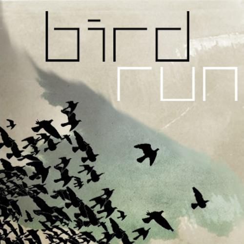 birdrun's avatar