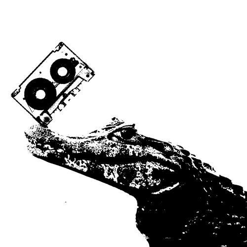 caimancassette's avatar