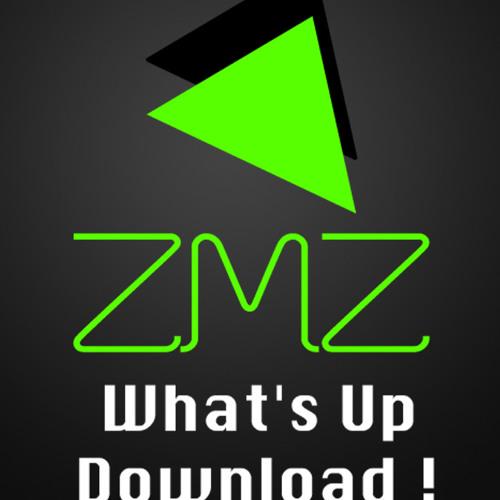 ZipMyZik France's avatar