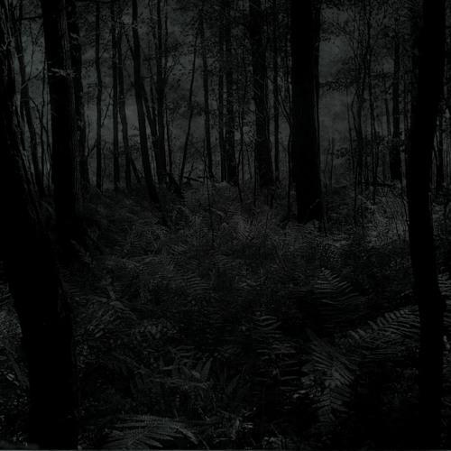 Darkness LoRd's avatar