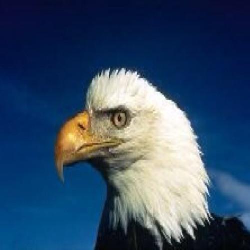 Eaglefire's avatar