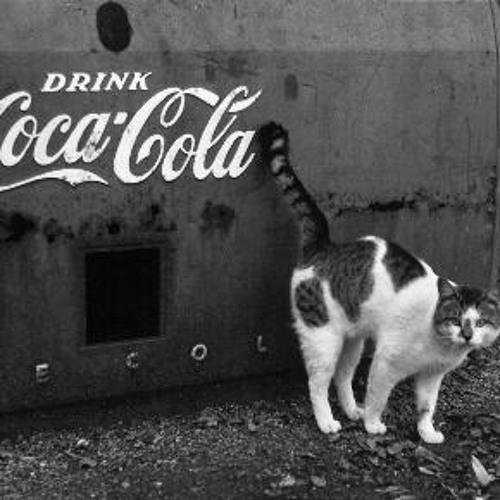 Cat on Coke's avatar