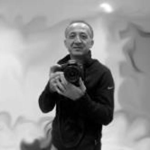 Ali Sarikaya 1's avatar
