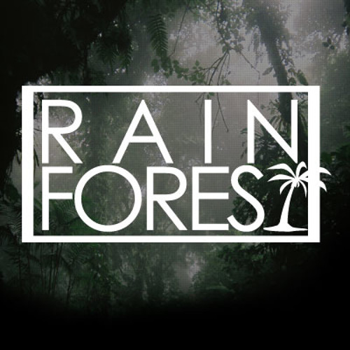 Rainforest Music's avatar