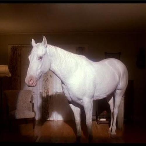 white_horse's avatar