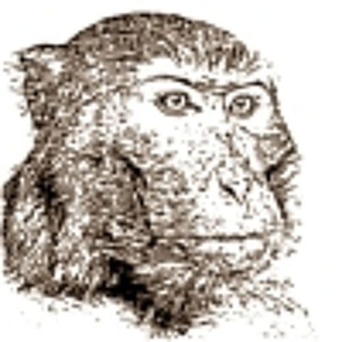 Monkeyscratch's avatar