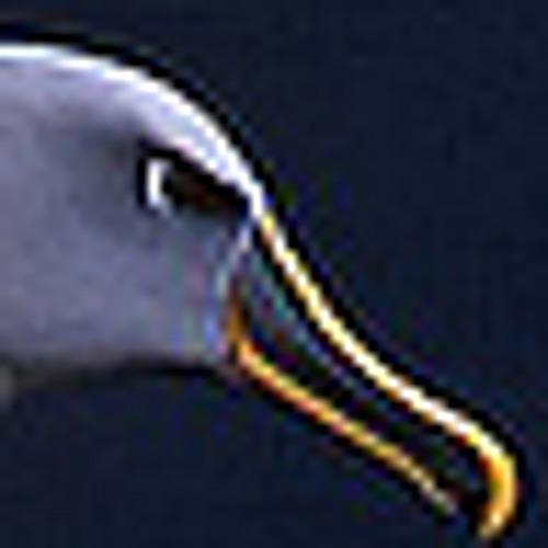 Stormpetrel's avatar