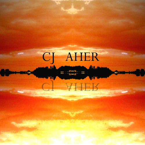 CJ Aher - Internal states