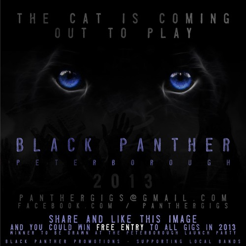 Black Panther Show - Interview with Unfortunate 02/01/13