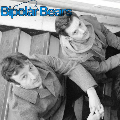 bipolar bears's avatar