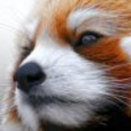 Chris Vucic's avatar