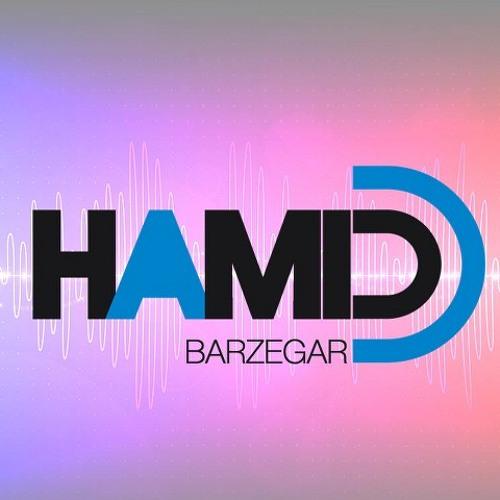 HamidBarzegar's avatar