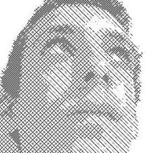 Alon Kotzki's avatar