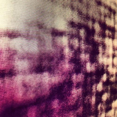 zota layer's avatar