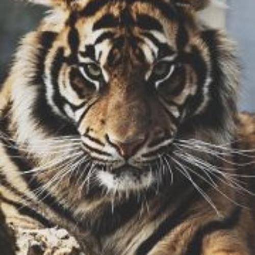 Kar Dalackyan's avatar