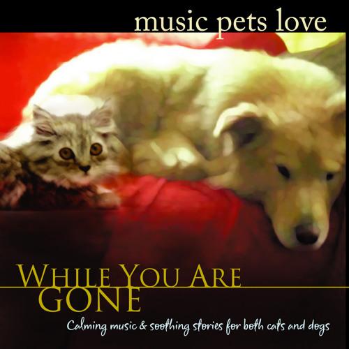 Music Pets Love's avatar