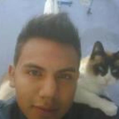 Leonardo Vergara 1's avatar