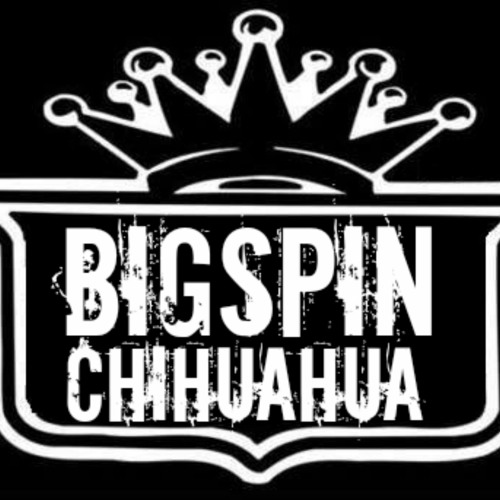 BigSpin Record's's avatar