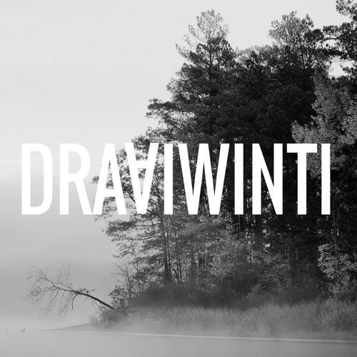 Draaiwinti's avatar