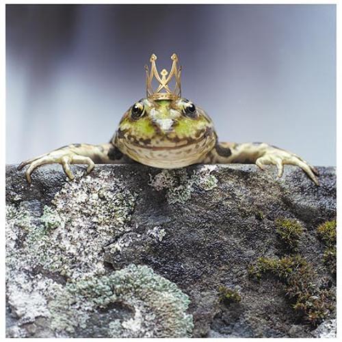 Der FroschKönig's avatar