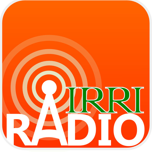Dr. John Sheehy | The Story of the Early Days of C4 at IRRI