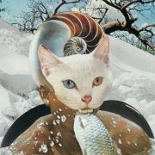 Max Moen's avatar
