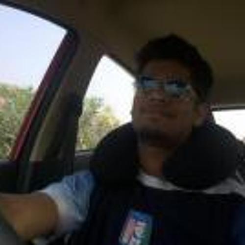 Sriram Radhakrishnan's avatar