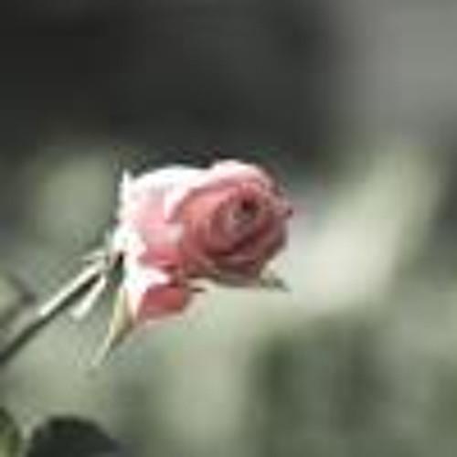 Vinodh Kumar DV's avatar