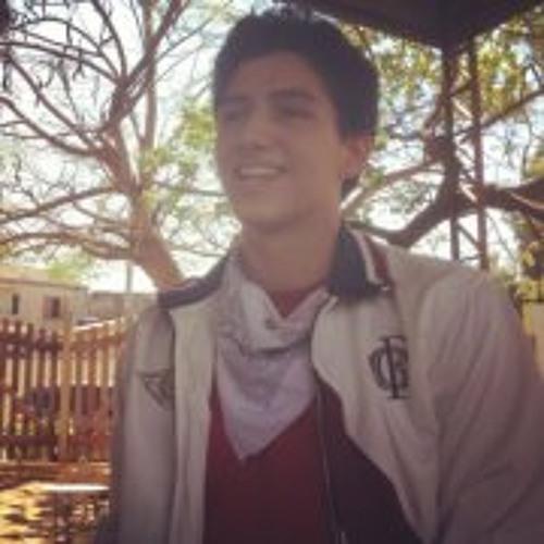 Luan Zanol's avatar