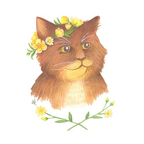 Steph Kunau's avatar