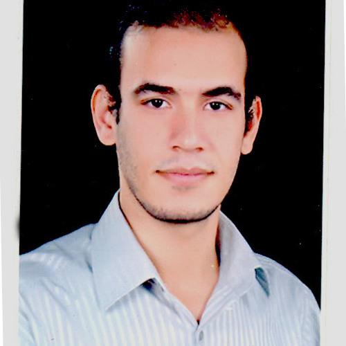 bahaa elsakhawy's avatar