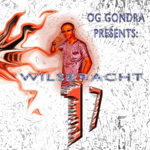 WILSKRACHT 17's avatar
