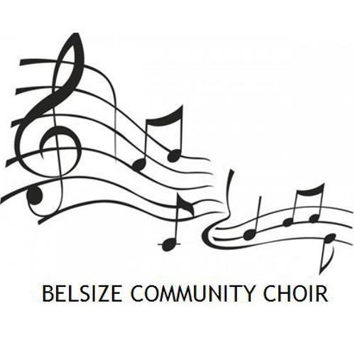 Belsize Community Choir's avatar