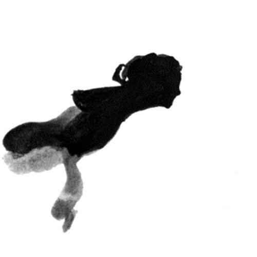 erenkapan's avatar